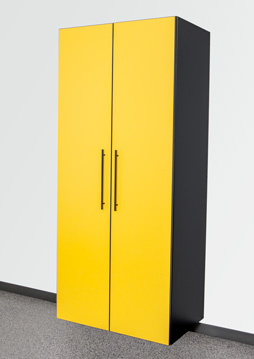 Sonic Yellow / Black Cabinet Option