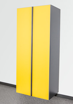 Sonic Yellow / Slate Cabinet Option